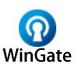 wingate  v9.4.0 中文版