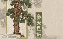 江南百景图参天巨松怎么获得 参天巨松最全获取方法