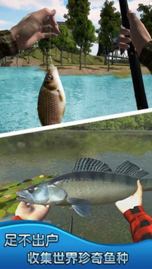 钓鱼大师3D破解版