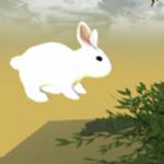 奔跑的兔子最新版