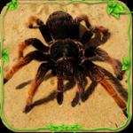 蜘蛛模拟器中文版