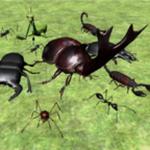 昆虫战斗模拟器汉化版