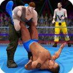 世界拳击队摔角比赛游戏