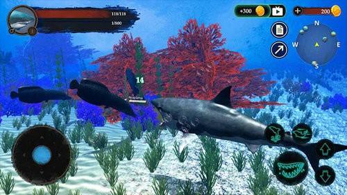 鲨鱼模拟下载