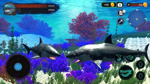 鲨鱼模拟游戏