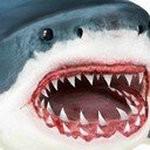 鲨鱼模拟器无敌版