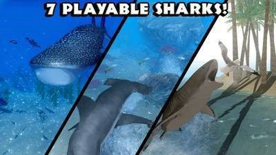 鲨鱼模拟器