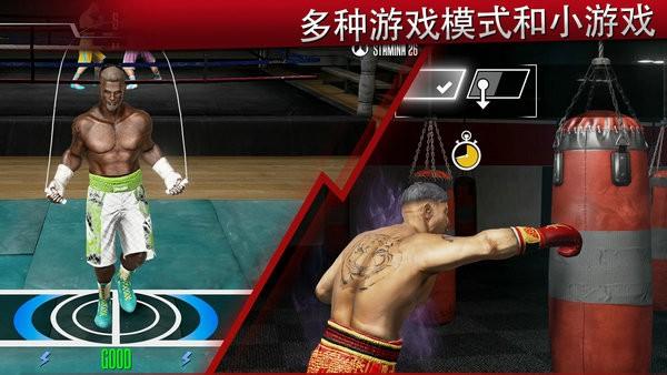 真实拳击2洛奇