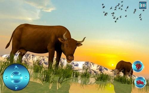 愤怒公牛攻击模拟器游戏