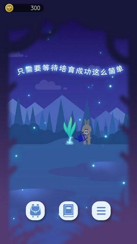 夜之森下载