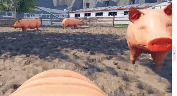 小猪模拟器下载