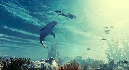 食人鲨游戏下载安装