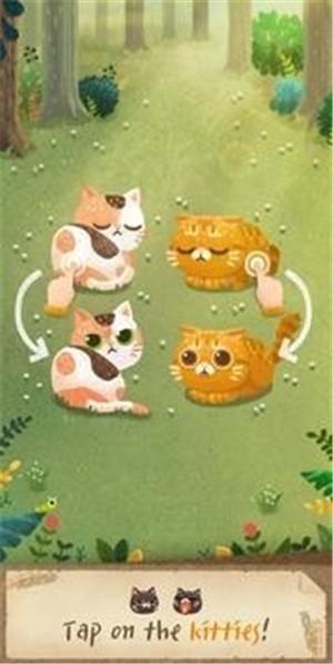 秘密猫森林破解版